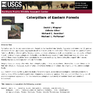 Thumbnail for Caterpillars of Eastern Forests