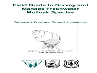 Thumbnail for Field Guide to Survey and Manage Freshwater Mollusk Species