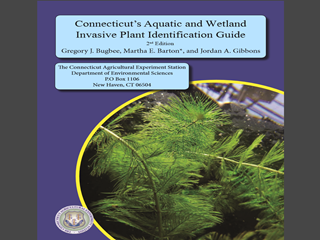 Thumbnail for Connecticut's Invasive Aquatic and Wetland Plants Identification Guide: 2nd Edition