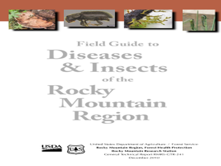 Thumbnail for Field Guide to Diseases & Insects of the Rocky Mountain Region