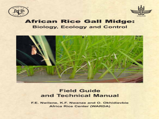 Thumbnail for African Rice Gall Midge: Biology, Ecology and Control Field Guide and Technical Manual